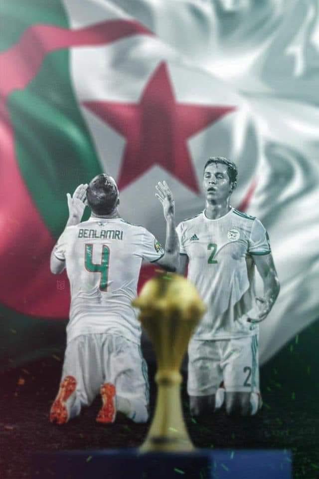 Photo of فرحة عربية كبيرة بعد تتويج المنتخب الجزائري