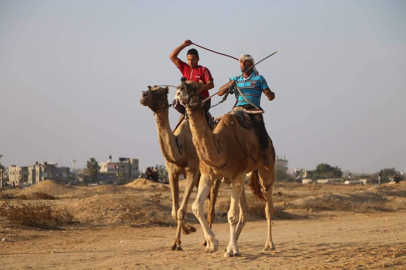 Photo of صور.. برعاية اللواء جبريل الرجوب : اختتام سباق الهجن الأول من نوعه